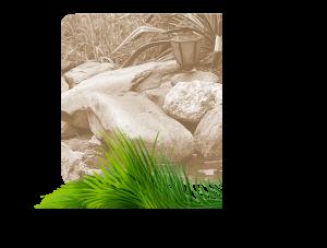 Landscape grass stone graphic